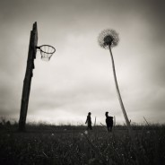 Photo Contest 'Basketball Country'