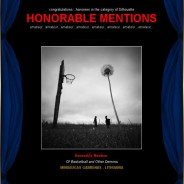 Honorable Mention in 7th Black&White Spider Awards